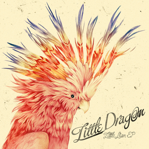 little-dragon-little-man