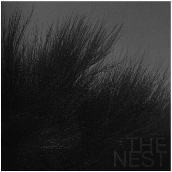 web cover THE NEST 1000px